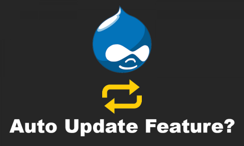 Drupal Auto Update Feature?